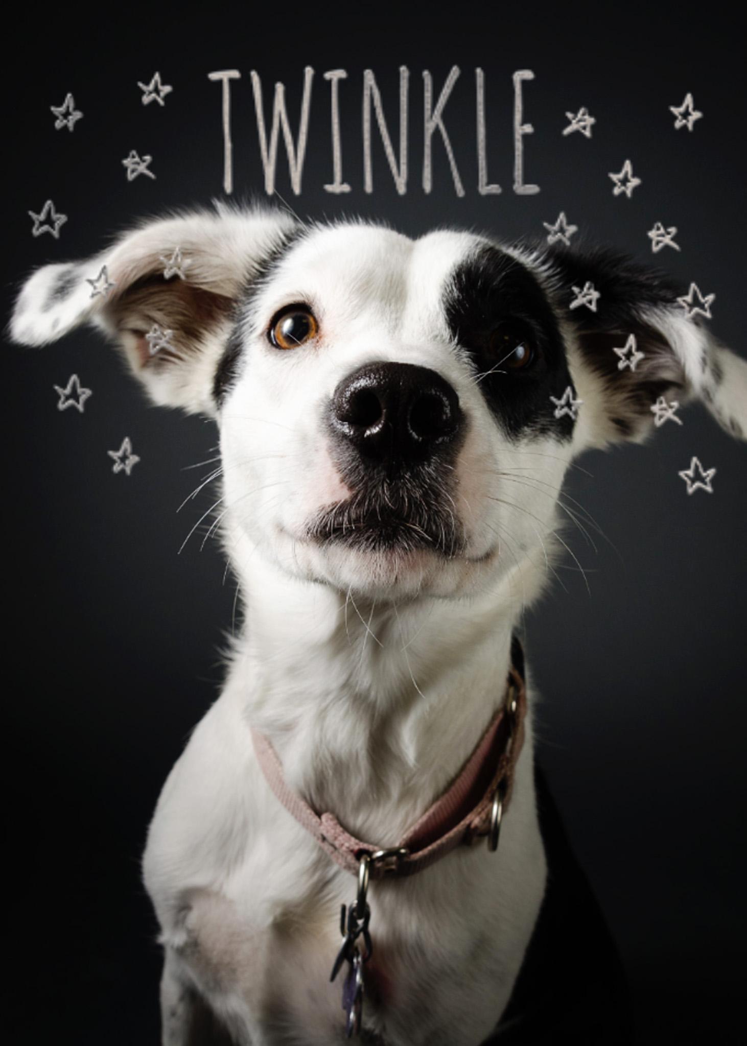 05-twinkle